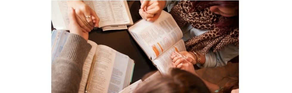 Womens-dinner-bible-study